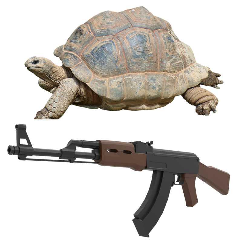 черепаха и автомат