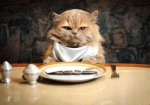 Зачем вашему ресторану крауд-маркетинг