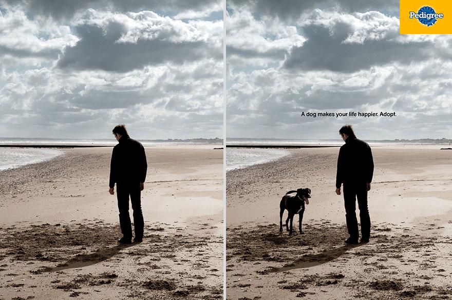 Реклама - собака делает вашу жизнь счастливее