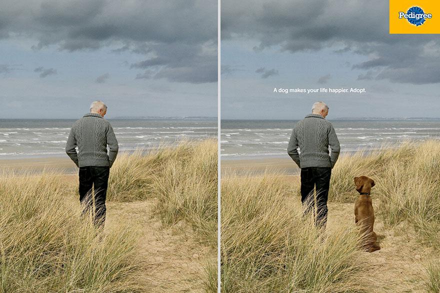 Реклама Педигри - собака делает вашу жизнь счастливее