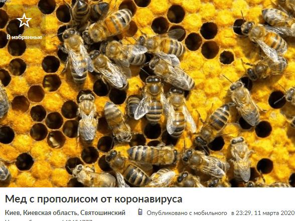 мед от коронавируса