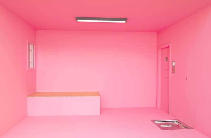 Рожева камера