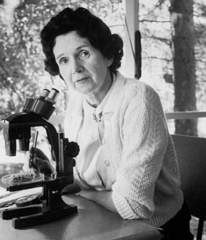 Рэйчел Карсон, биолог, эколог и писатель